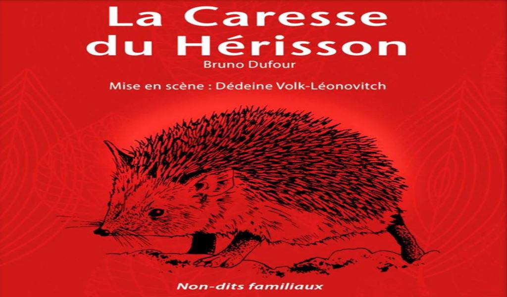 Read more about the article La caresse du hérisson